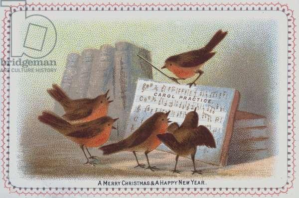 Group of robins singing carols, Christmas card (chromolitho)