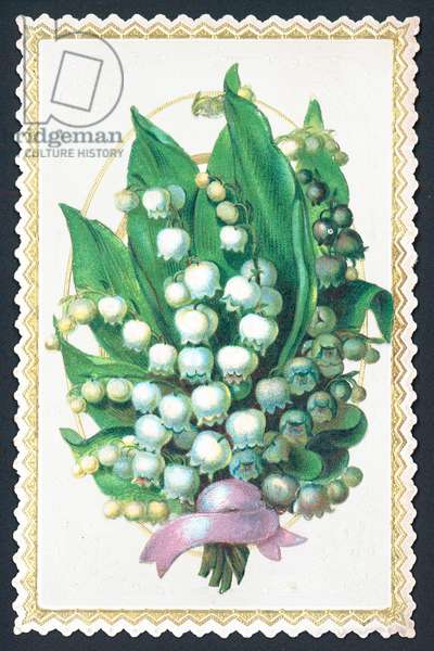 Lily Of The Valley Plant, Card (chromolitho)