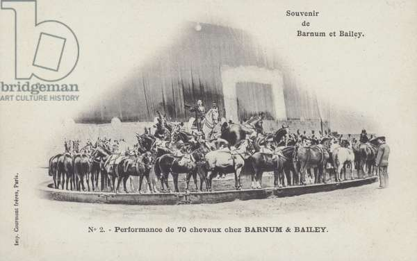 Performance by seventy horses of Barnum and Bailey's Circus (b/w photo)