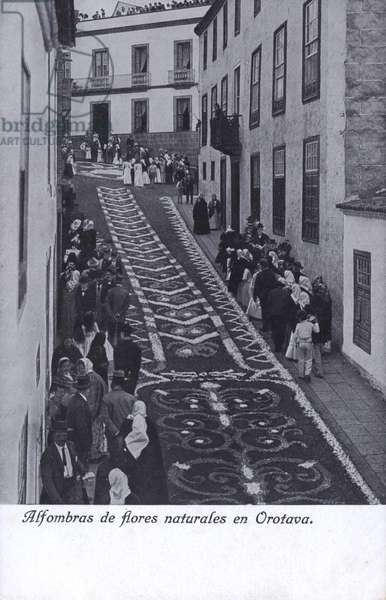 Carpets of natural flowers in Orotava, Tenerife, Canary Islands (b/w photo)