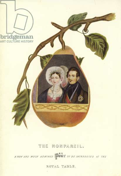The Nonpareil with portraits of Queen Victoria and Prince Albert (colour litho)