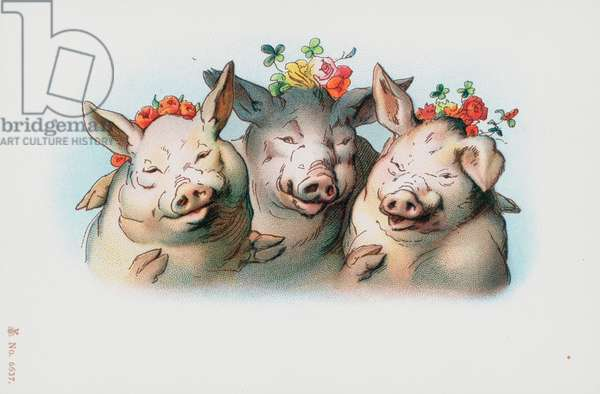 Three pigs with flowers on their heads (colour litho)