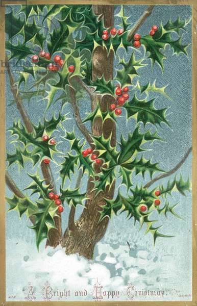 Holly Tree, Christmas Card (chromolitho)