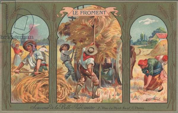 Harvesting wheat (chromolitho)