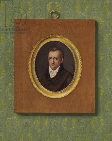 Portrait of Johann Wolfgang Goethe (colour litho)