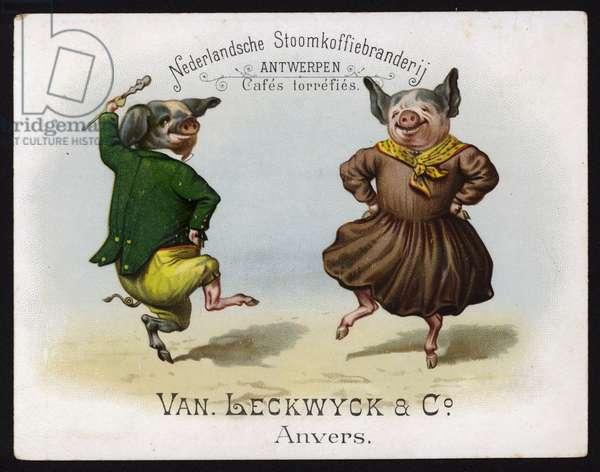 Dancing pigs wearing Irish costume (chromolitho)