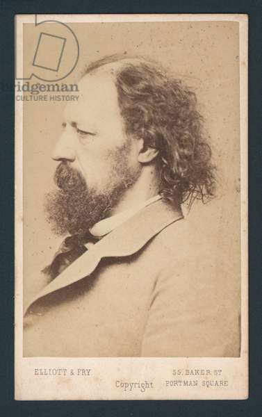 Lord Tennyson, carte de visite (photo)