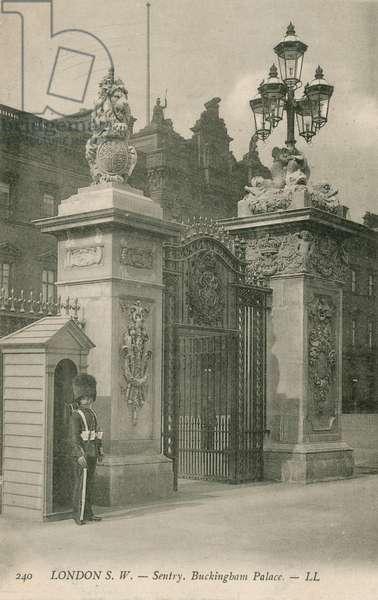 Sentry, Buckingham Palace (photo)