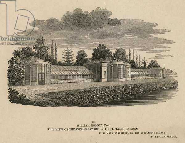The Conservatory in the Botanic Garden, Kew, London (engraving)