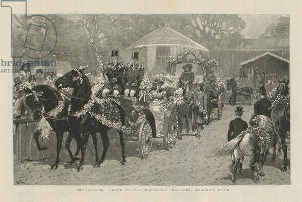 The floral parade at the Botanical Gardens (engraving)