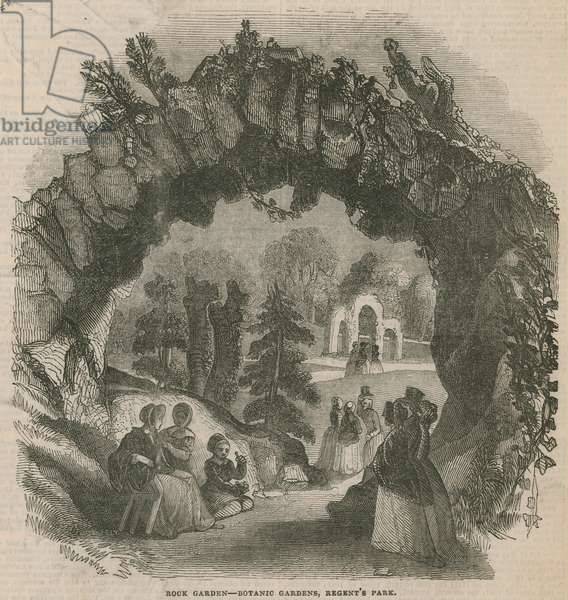 Rock garden at the Botanic Gardens (engraving)
