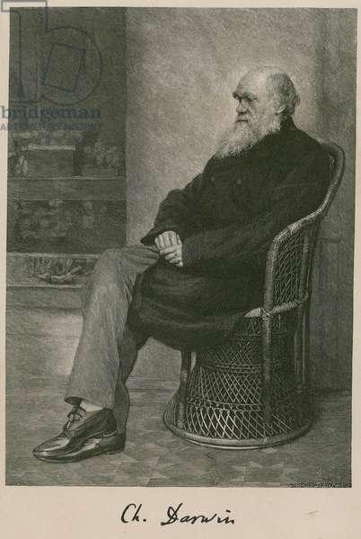 Charles Darwin (engraving)