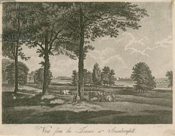 View from the terrace of Strawberry Hill, London (engraving)