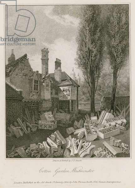 Cotton Garden in Westminster (engraving)
