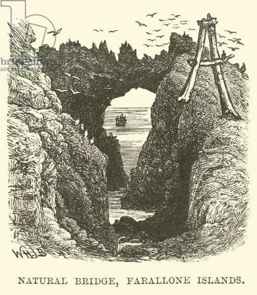 Natural Bridge, Farallone Islands (engraving)