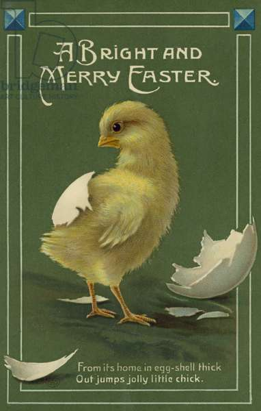 Newly hatched chick, Easter greetings card (chromolitho)