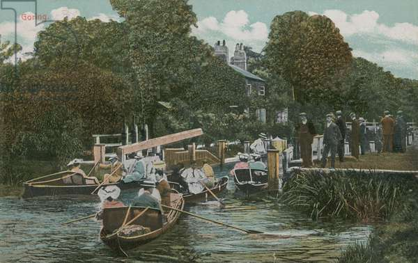 Goring - boating on the river. Postcard sent in 1913.