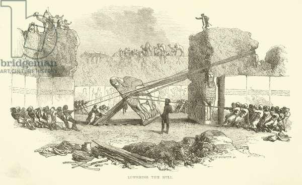 Lowering the bull (engraving)