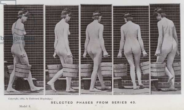 The Human Figure in Motion: Selected phases from series 43 (b/w photo)