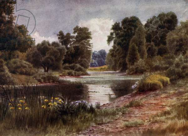 Kew Gardens: The Lake, Looking South (colour litho)