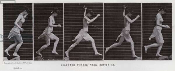The Human Figure in Motion: Selected phases from series 54 (b/w photo)