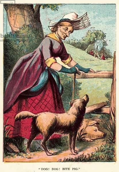 Dog! dog! bite pig (coloured engraving)