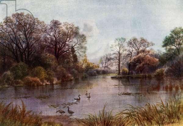 Kew Gardens: The Lake (colour litho)