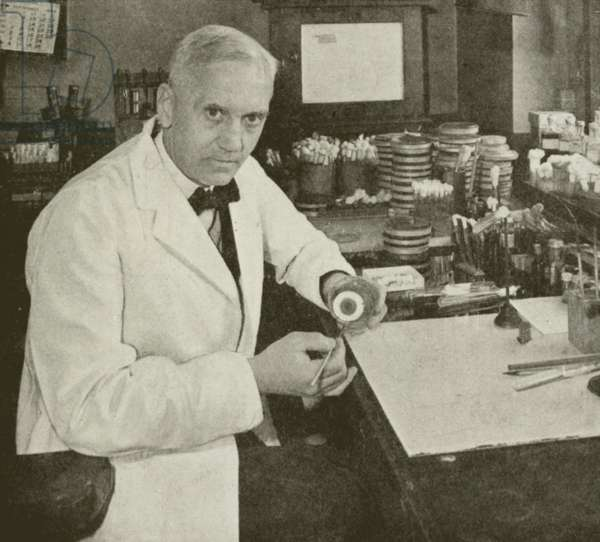 Professor Alexander Fleming who in September 1928 made the first discovery which led to the production of penicillin (b/w photo)