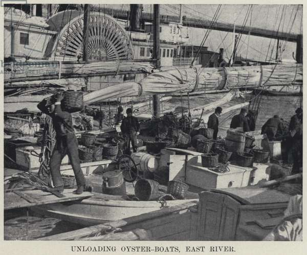 Unloading Oyster-Boats, East River (b/w photo)