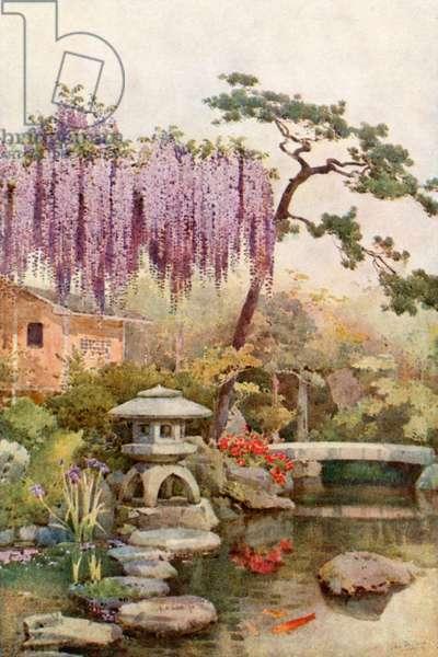 Wistaria in a Kyoto Garden (colour litho)