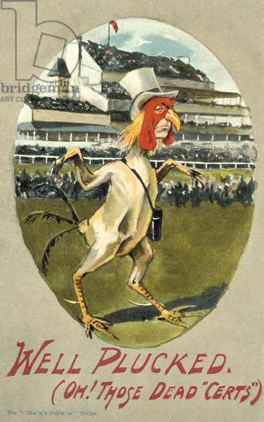 Gambling: a losing punter at the races depicted as a plucked chicken (colour litho)