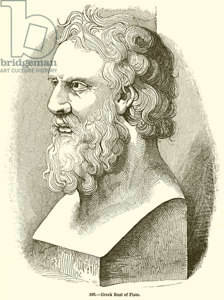 Greek Bust of Plato (engraving)