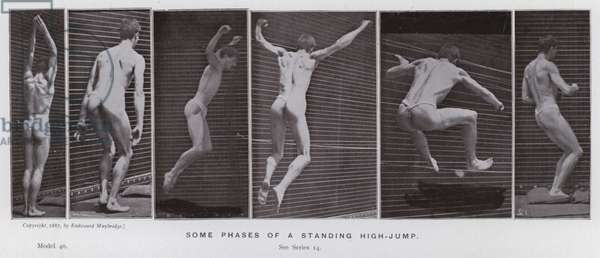 The Human Figure in Motion: Some phases of a standing high-jump (b/w photo)