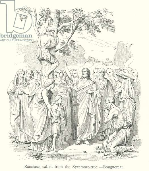Zaccheus called from the Sycamore-tree (engraving)