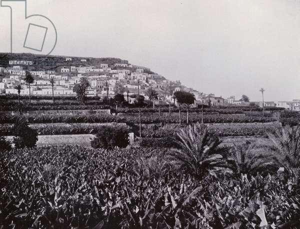 Risco, Part of Las Palmas (b/w photo)
