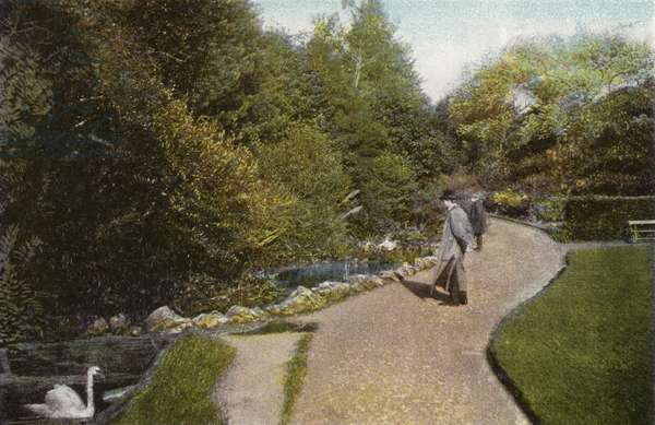 View in Ventnor Park (photo)