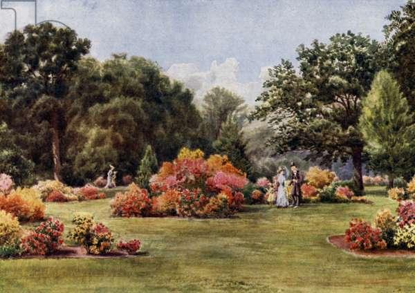 Kew Gardens: The Azaleas (colour litho)