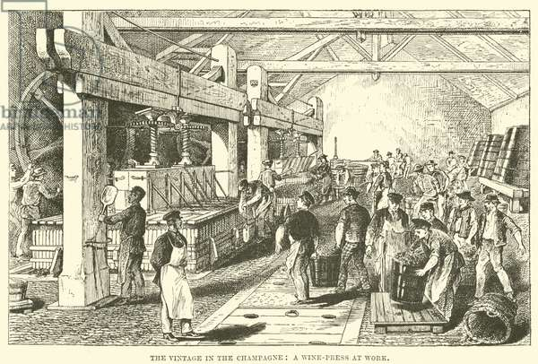 The Vintage in the Champagne: A Wine-Press at Work (engraving)