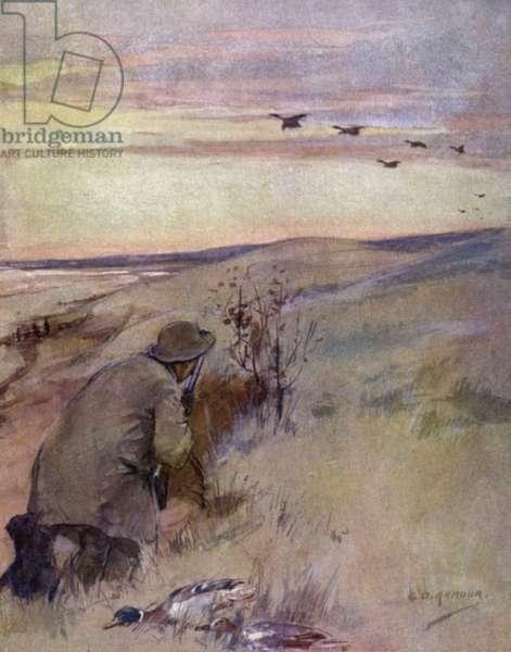 Wild fowling: flighting (colour litho)