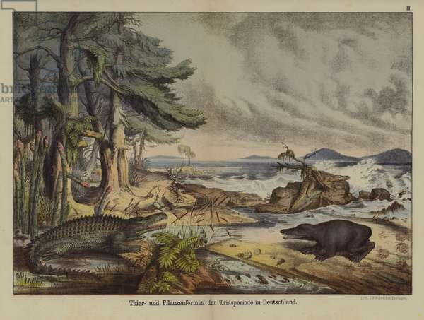 Plants and animals of the Triassic Period in Germany (colour litho)