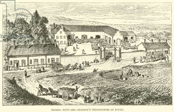 Messrs, Moet and Chandon's Vendangeoir at Bouzy (engraving)