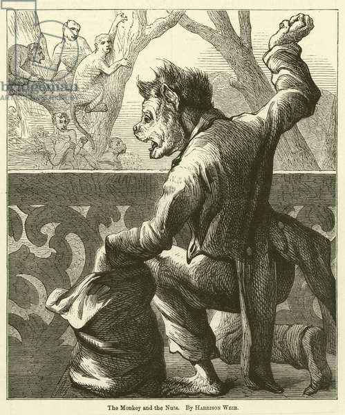 The Monkey and the Nuts (engraving)