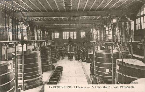Benedictine liqueur distillery, Fecamp, France (b/w photo)