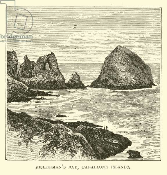 Fisherman's Bay, Farallone Islands (engraving)