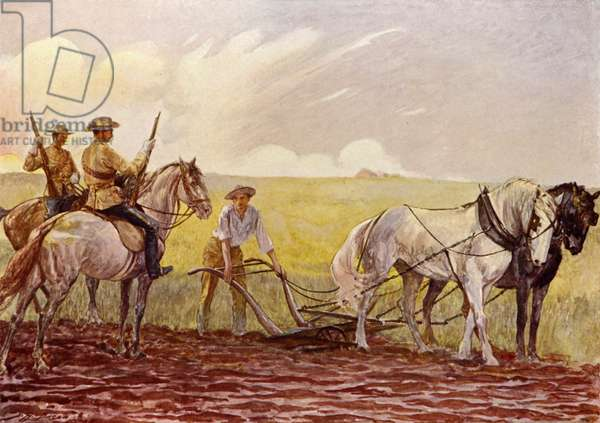 Canadian Mounted Police (colour litho)