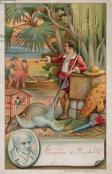 Alexander von Humboldt,  Prussian geographer, naturalist and explorer (1769 -1859) (chromolitho)