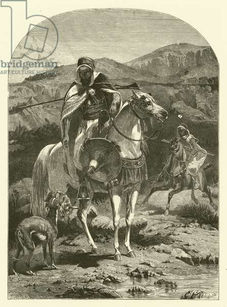 Hare hunting in Algeria with greyhounds (engraving)