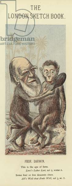 Caricature of Charles Darwin (colour litho)