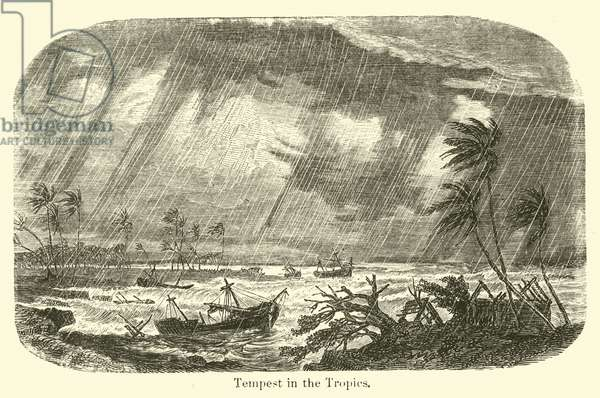 Tempest in the Tropics (engraving)