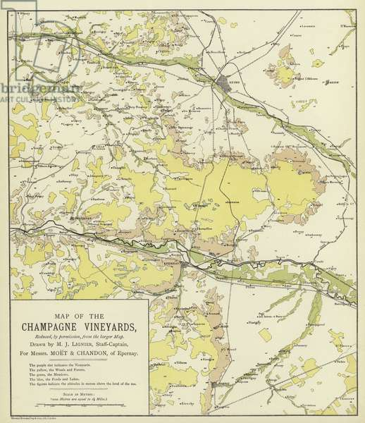Map of the Champagne Vineyards (colour litho)